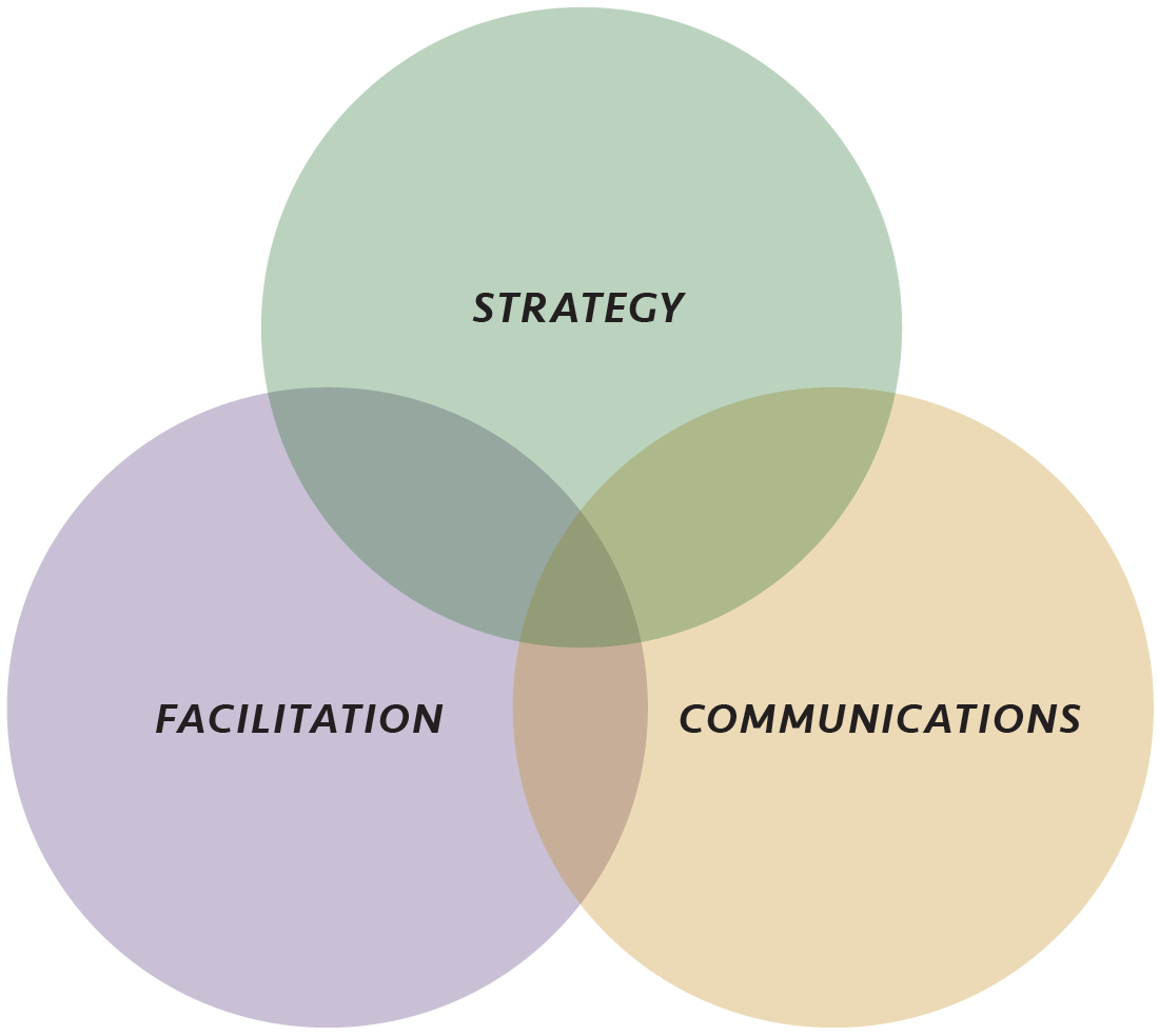 Strategy, Facilitation, Communications