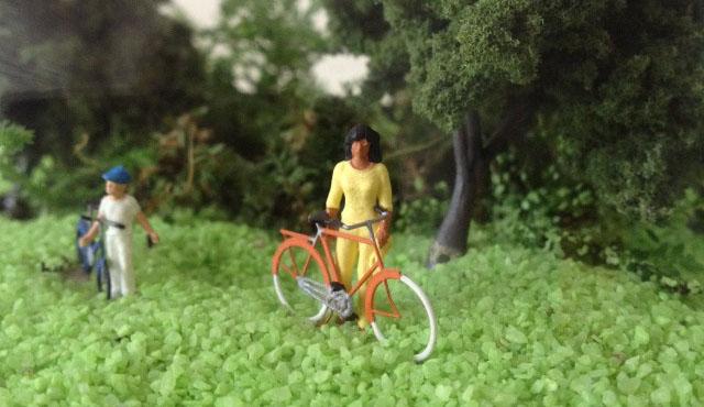 bicycle terrarium