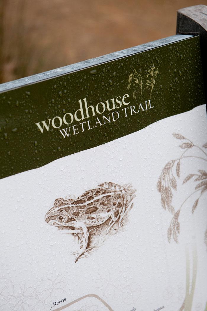 2011-08-18-wood099