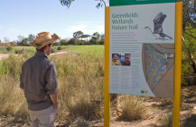 Greenfields Wetlands: a wetland trail connecting stormwater and nature