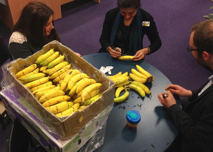 UNS-Banana-lines