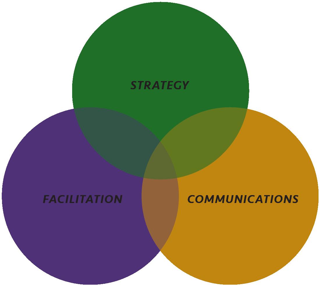 Strategy, Facilitation, Communications